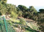 11823 – Terreno – Costa Brava | 6777-4-150x110-jpg