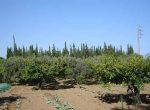 11198 – Masia con terreno de 1.5 Ha a la venta en Vilanova i la Geltru | 9047-10-150x110-jpg