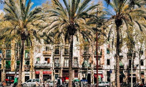 Edificio en venta situado en el centro histórico de Barcelona  El Raval | el-raval-1-1-570x340-jpg