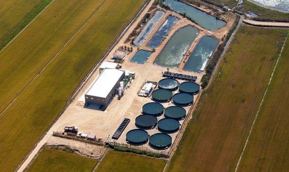 Venta de la piscifactoría de esturiones en Delta del Ebro en Tarragona | zavod1-570x340-jpg